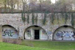 Frühling im Bürgerpark 2019